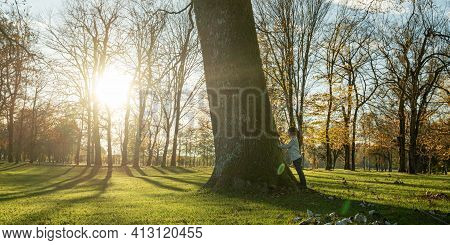 Toddler Boy Standing By A Majestic Tree Trunk Looking At It With Awe In A Park Lit By The Setting Su