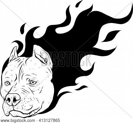 Draw In Black And White Of Head Of Dog Pitbull With Flames Vector