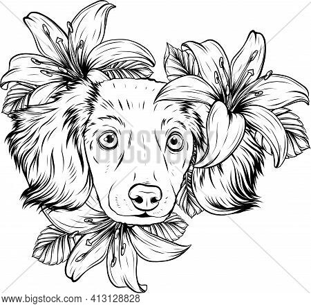 Draw In Black And White Of Portrait Of A Spaniel Dog In A Flower Head Wreath. Vector Illustration.