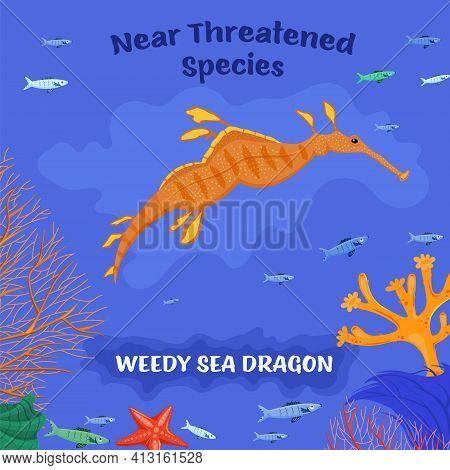 Coral Reef Inhabitants. Endangered Fish Species Concept