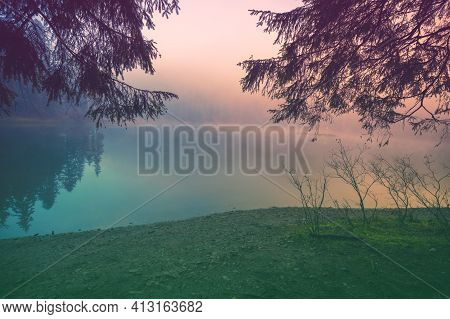 Fir Trees Around The Lake In The Misty Morning In Autumn. Lake Synevyr In The Carpathian Mountains O