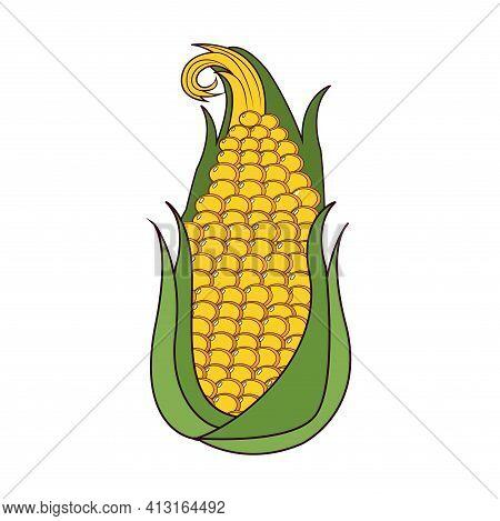 Isolated Corn Cob Icon. Vegetable Icon - Vector Illustration