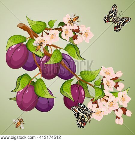 Branch With Plums In A Color Illustration.branch With Plums And Butterflies On A Colored Background