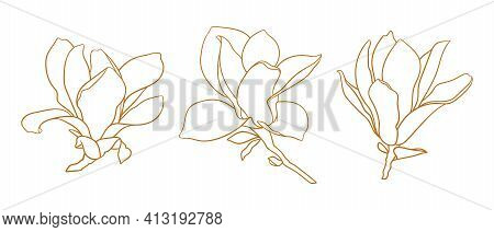 Set Of Magnolia Flowers, Thin Line Drawing On White Background. Floral Vector Sketch In Gold Color,