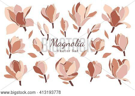 Set Of Magnolia Flowers, Buds, Leaves On White. Style Floral Collage In Pastel Color Palette. Modern