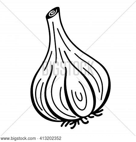 Garlic Vector Icon. Isolated Illustration Of A Vegetable On A White Background. Garlic Contour, Flat