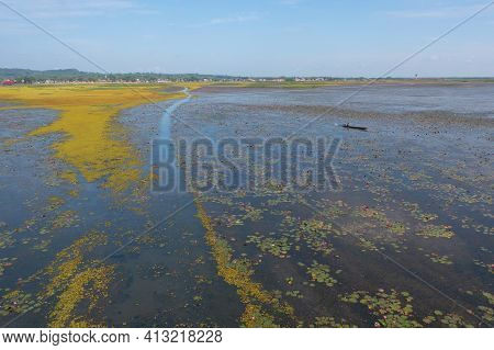 Aerial Top View Of Pink Lotus Flowers In Pond, Sea Or Lake In National Park In Thale Noi, Songkhla,