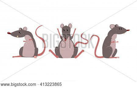Funny Rat As Long-tailed Rodent Sitting On Hind Legs Vector Set