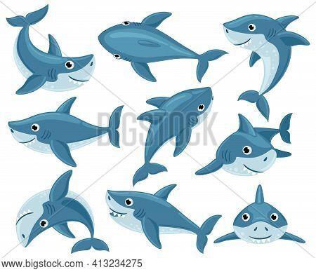 Cartoon Sharks. Cute Underwater Shark Animals, Toothy Fish Mascot, Ocean Fauna Character. Sharks Cre