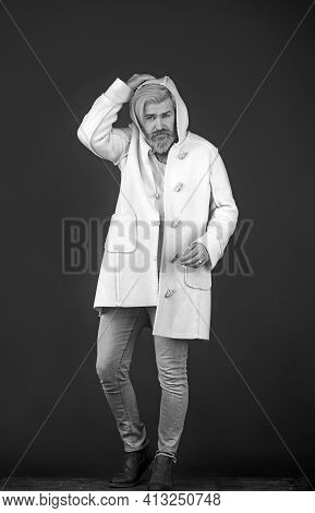 Elegant Bearded Man In Coat Puts On A Hood, Standing On A Dark Background.