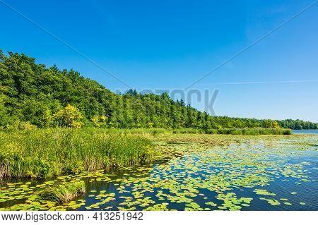 Landscape On A Lake In Templin, Germany.