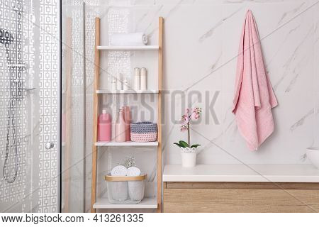 Modern Bathroom Interior With Decorative Ladder And Shower Stall