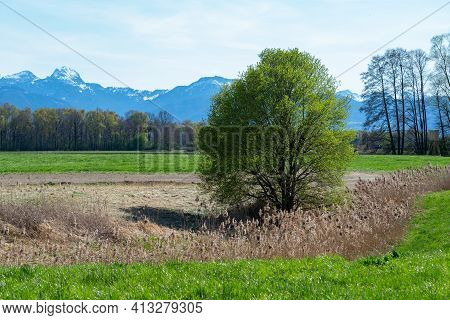 View From Agricultural Land Around Rosenheim, Bavaria, Germany Towards The Alps