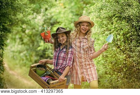 Cheerful Children Working In Garden. Growing Vegetables. Planting Vegetables. Summer Activity. Siste
