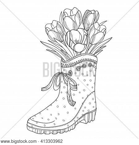 Vector Spring Bouquet With Outline Crocus Or Saffron Flower And Leaves In The Rubber Boot In Black I