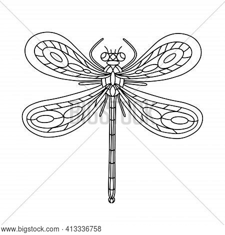 Dragonfly Beetle-insect Coloring Book. Dragonfly Linear Vector Illustration. Anti-stress Coloring Bo