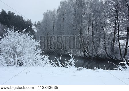 Winter Frosty Morning On The River. The Neighbor Protected White From Snow. Gray Birches In Hoarfros