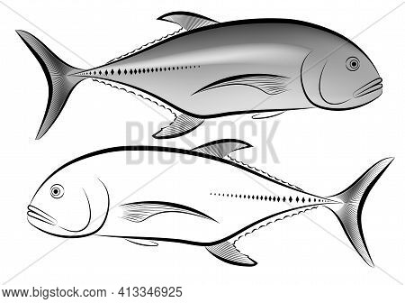 Image Of A Caranx Ignobilis In Black And White And Gray Vector Illustration