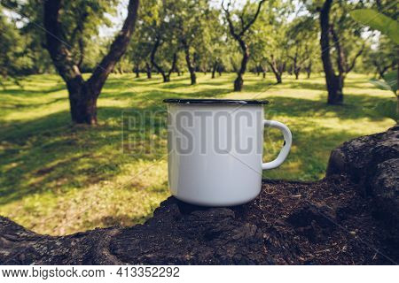 Enamel White Mug On Apple Tree Branch Mockup. Stock Countryside Photo With White Metal Cup. Rustic S