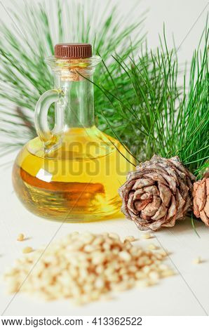 Pine Nut Oil. On White. Nearby Pine Nuts And Cones. Isolated.