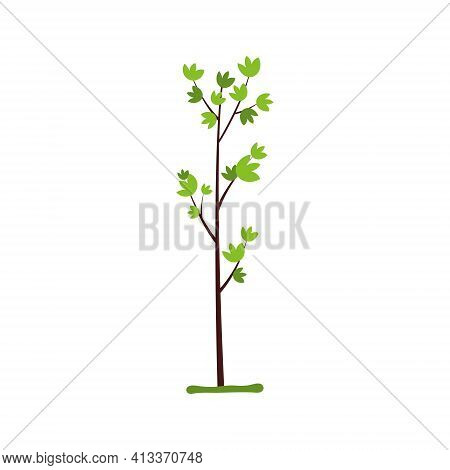 Seeds And Seedlings Seedlings Of Spring Plants. Vector Illustration