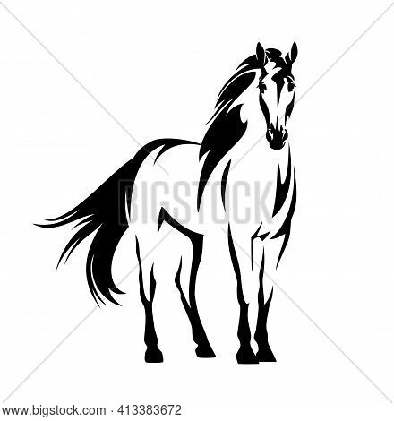Beautiful Mustang Horse With Wind Blown Mane And Tail - Standing Wild Stallion Black And White Vecto