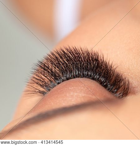 Beautiful Long Lashes. Treatment of Eyelash Extension. Woman Eyes with Artificial False Eyelashes.