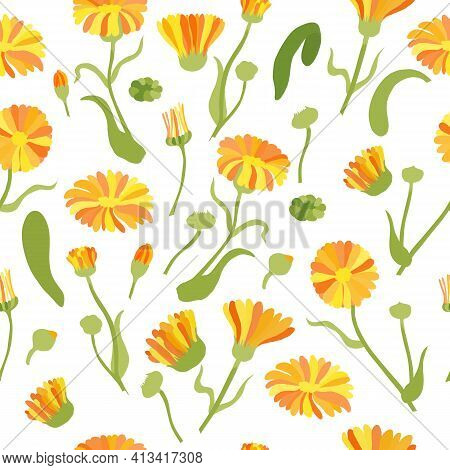 Seamless Pattern With Colored Calendula Parts. Twigs, Flower Heads And Leaves Placed Chaotically On