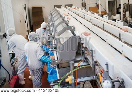 Chicken Fillet Production Line.factory For The Production Of Food From Meat.industrial Equipment At