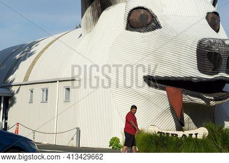 Tirau  New Zealand - February 25 2021; Pedestrian Walks By Large White Corrugated Iron Iconic Sheep