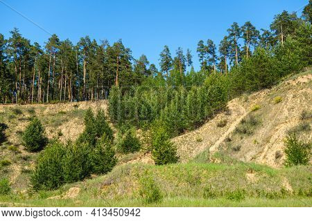 Former Industrial Quarry Overgrowing By Pine Forest. Almost All The Human Traces Hidden Except Steep