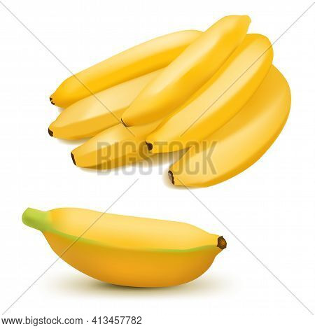 Set Of Realistic Banana And Baby Bananas Isolated On White Background. Tropical Fruits. 3d Vector Il
