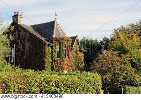 House Covered In Green Vine Creepers And Surrounded By Hedges.