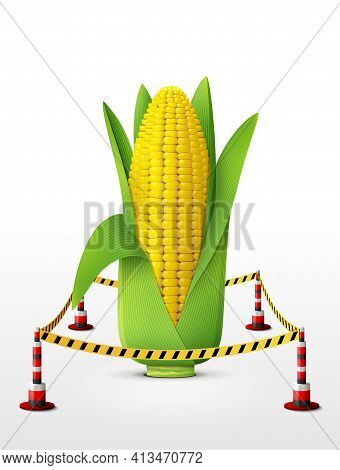 Ear Of Corn Located In Restricted Area. Maize Cob With Leaves Surrounded Barrier Tape. Vector Illust