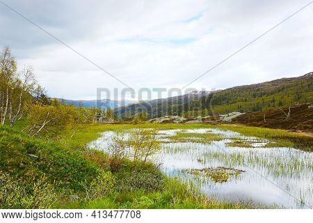 Spring Tundra Landscape In Hardangervidda National Park, Norway