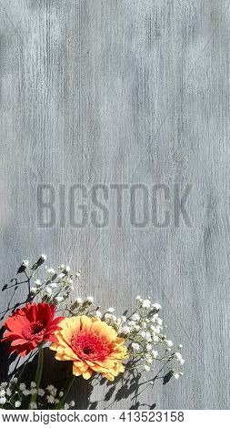 Orange And Burgundy Gerberas And White Baby Breath Flowers On Grey Wood Background, Mockup With Copy