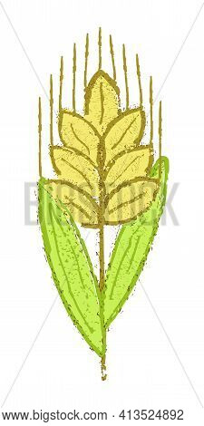 Color Creative Spikelet Icon. Grunge Vector Illustration Of Wheat, Barley Or Rye Isolated On White B