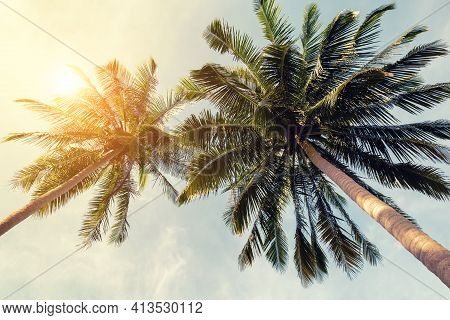 Beautiful Tropical Beach Background. Coconut Palm Trees And Cloud Over Blue Sky In Vintage Tone. Sum