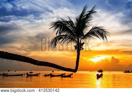 Palm Tree Silhouette On Sunset Tropical Beach. Coconut Palm Tree Against Colorful Sunset On The Beac