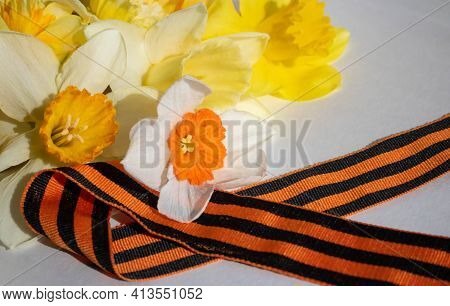 Daffodils And St. George Ribbon On A White Background. St. George's Ribbon-a Symbol Of The Great Vic