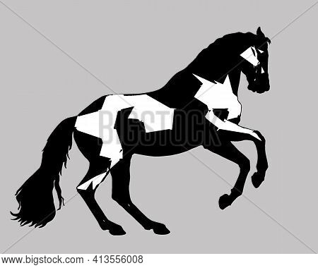 Prancing Horse, Stylized Isolated Monochrome Image On A Gray Background