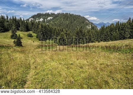 Meadow In Low Tatras, Slovak Republic. Hiking Theme. Seasonal Natural Scene.