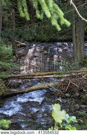 Water Stream In Forest, Low Tatras, Mountains, Slovak Republic. Hiking Theme. Seasonal Natural Scene