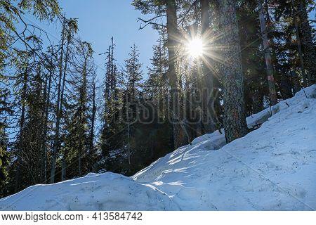 Low Tatras Mountains Scene, Slovak Republic. Hiking Theme. Seasonal Nature.