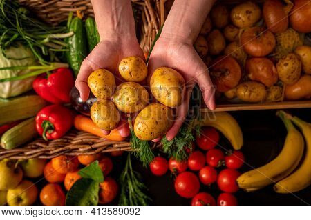 Organic Vegetables. Farmers Hands With Freshly Picked Vegetables. Fresh Organic Potatoes. Fruits And