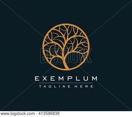 Golden Tree Vector Icon. Nature Trees Vector Illustration Logo Design. Ornamental Round Monogram, Te