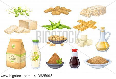 Soy Product Vector Icon. Soy Sprouts, Tofu Skin, Coagulated Soy Milk, Soybean, Tempeh, Miso, Flour A