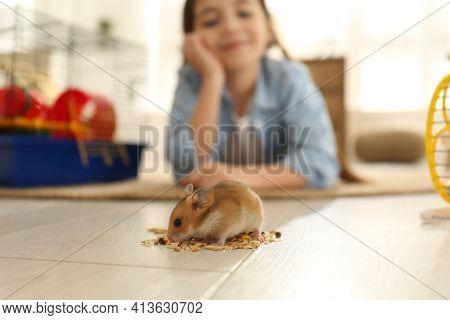 Little Girl Feeding Her Hamster At Home, Focus On Pet