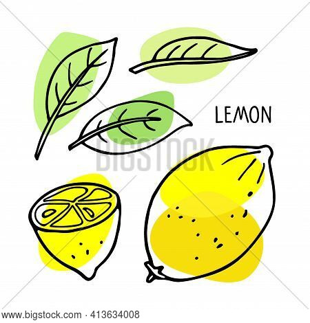 Lemon Fruit And Leaf. Hand Drawn Sketch With Bright Yellow And Green Spot Isolated On White. Doodle