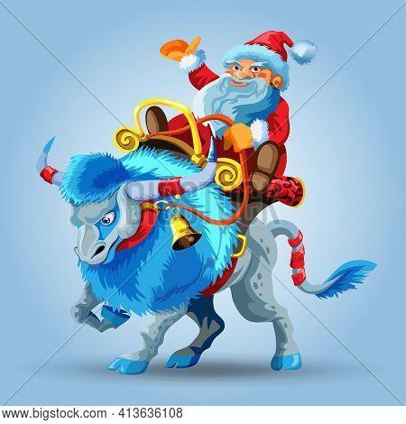 Santa Claus Rides A Snowy Blue Bull. Blue Taurus With Long Mane. Santa Claus Riding A Saddle. Happy